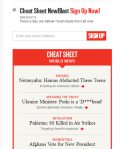 Email Option for Cheat Sheet